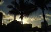 Kennel club: Inu Aloha