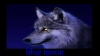 blue_moon_2002