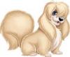 luv2beach - Dogzer dog breeder