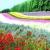 WriteMePup Gardens