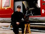 Trakr - German Shepherd Dog