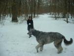 syntaxe, mon irish wolfhuond - LEVRIER IRLANDAIS - Irish Wolfhound