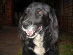 Flori - (12 years)